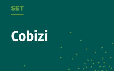 Cobizi